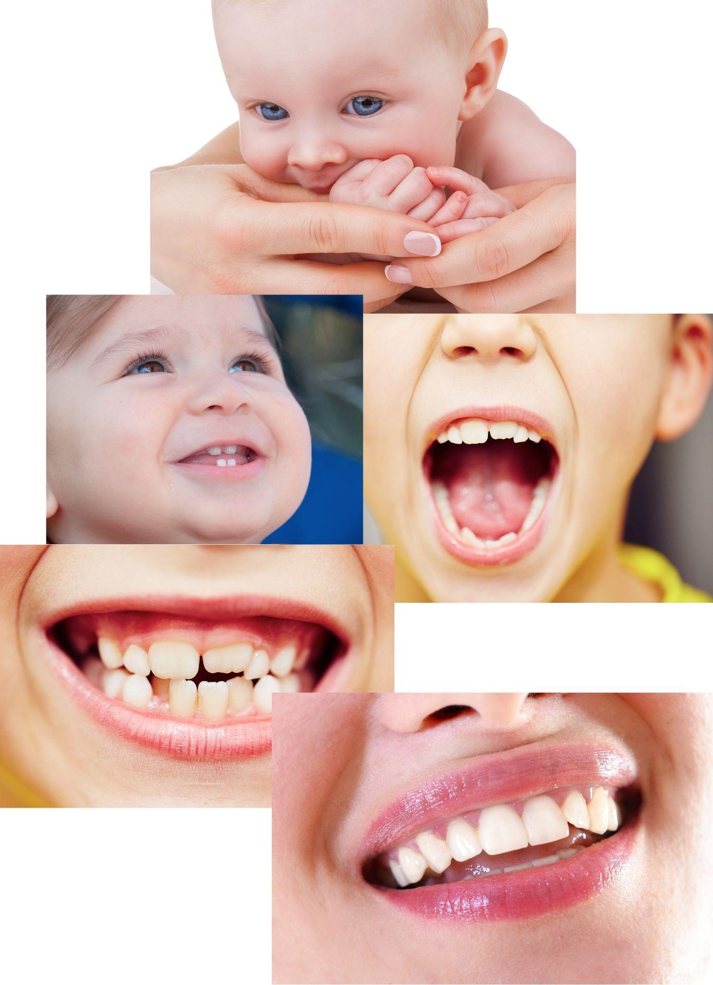 Studio dentistico Tomkins(2)